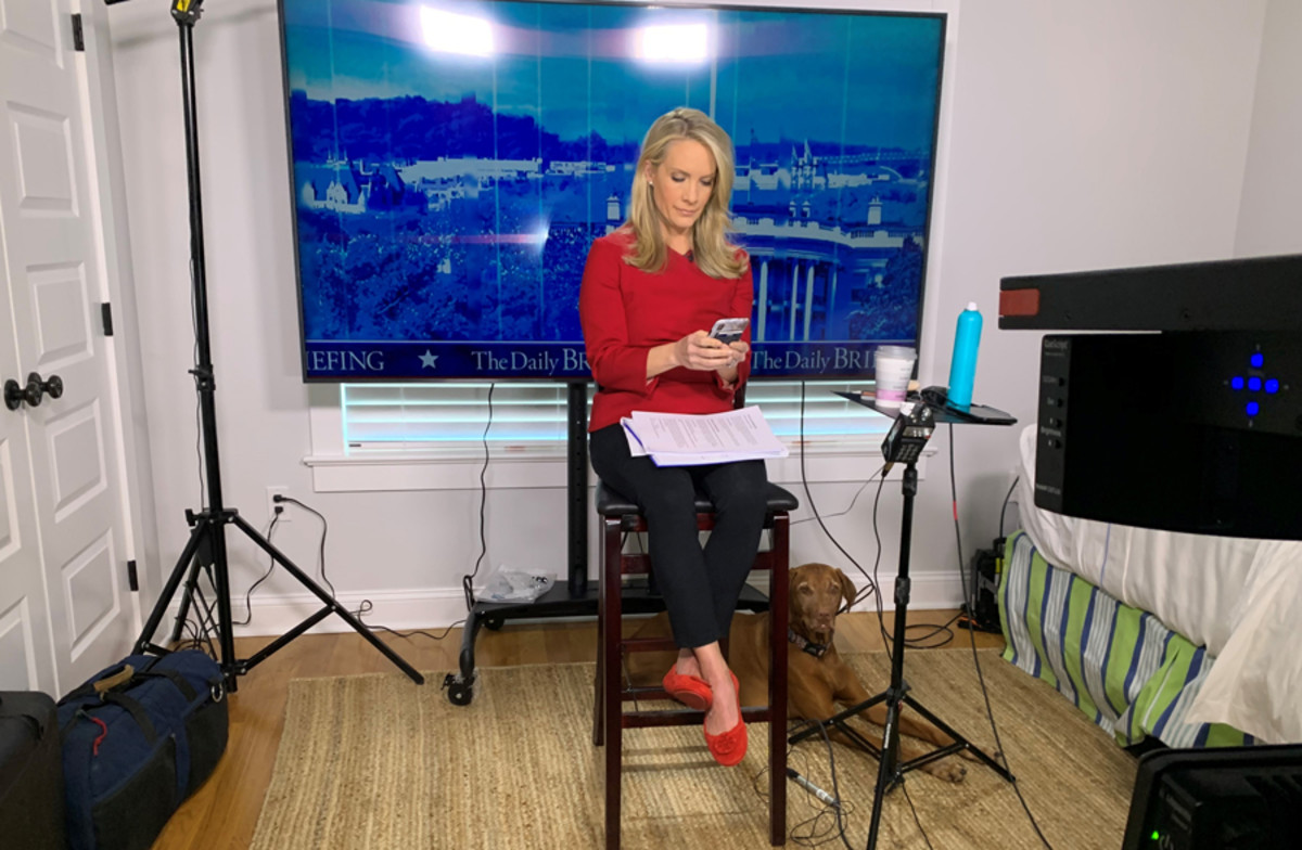 Dana Perino streaming at home