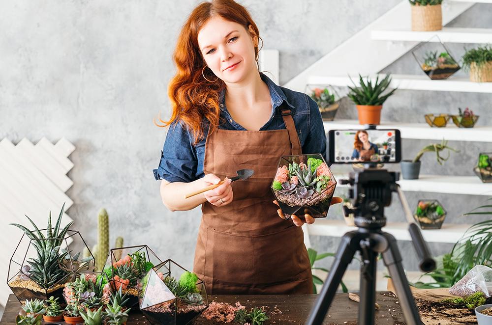 Virtual Succulent Garden Class